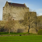 custom tours ireland athenry castle